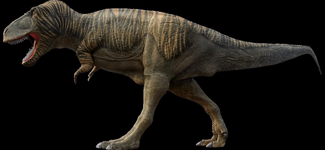 T rex tyrannosaurus rex moab giants dinosaur park for Tyranosaurus