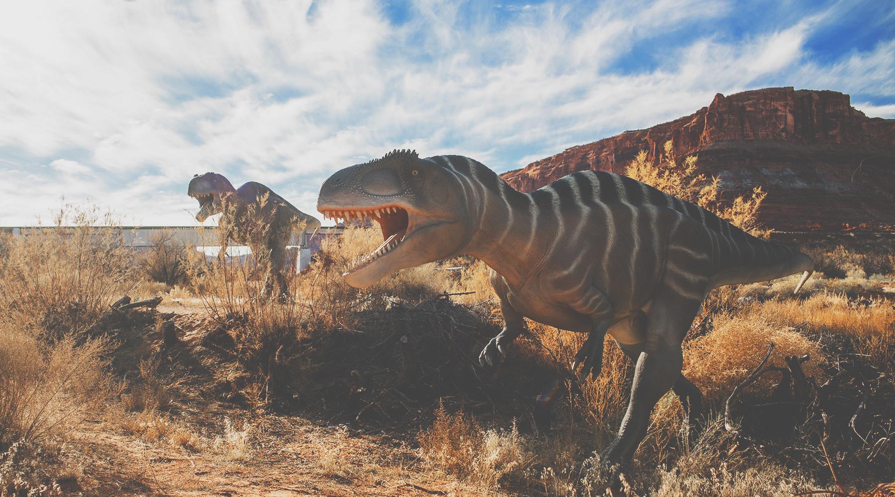 Moab Utah datingokcupid orgia punertava